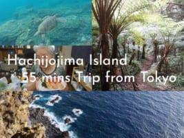 Hachijojima Island Itinerary for 2 Days