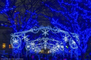 Best Winter Illumination Spots in Osaka