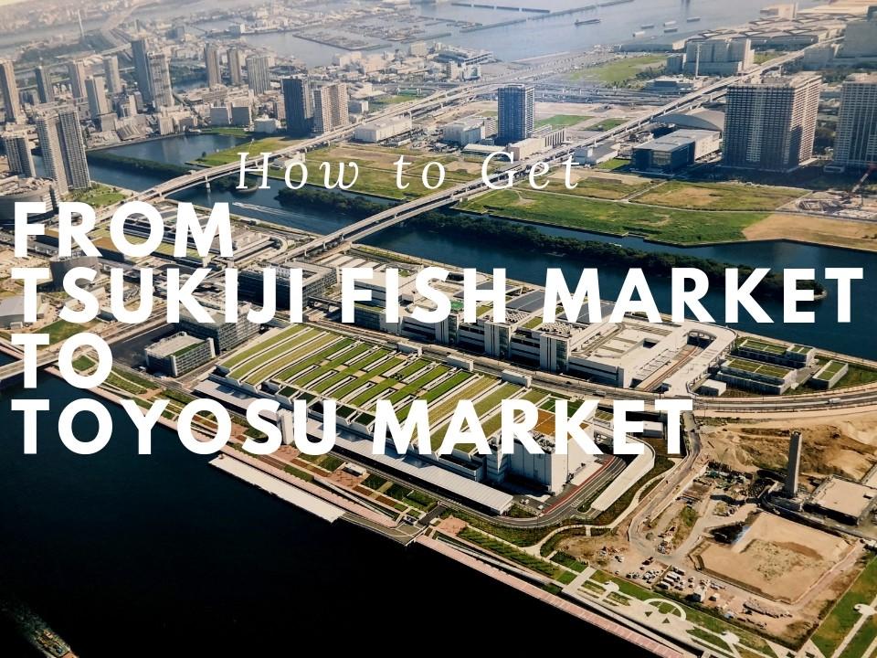 Toyosu Market: How to Get to Toyosu Fish Market from Tsukiji Fish Market