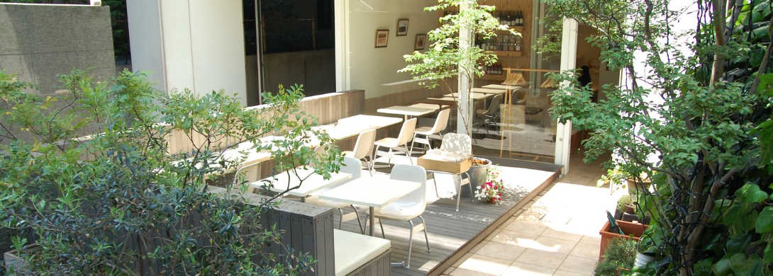 5 Best Organic and Vegan Food Restaurants in Shibuya, Tokyo - Japan