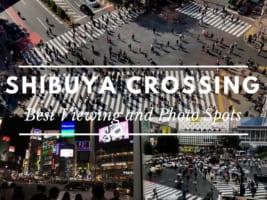 5 Best Shibuya Crossing Photo Spots