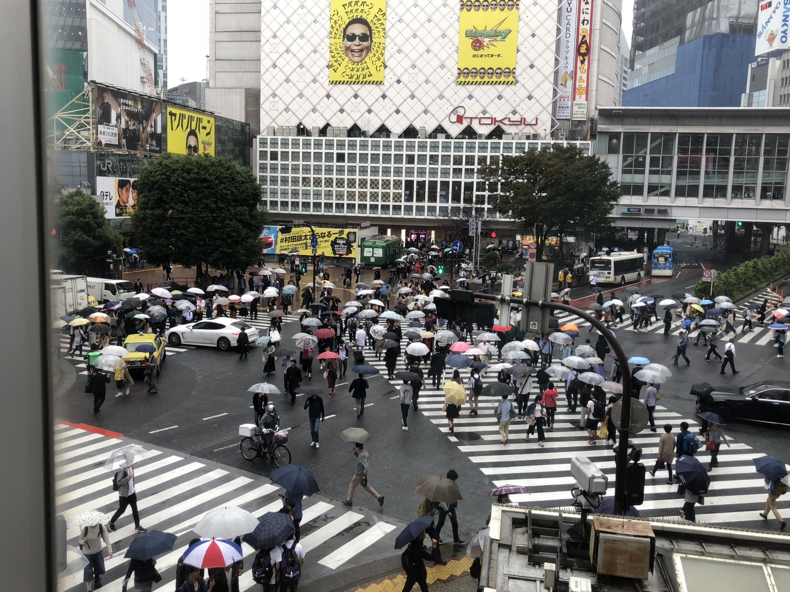 The view of Shibuya Crossing from STARBUCKS Shibuya Tsutaya store