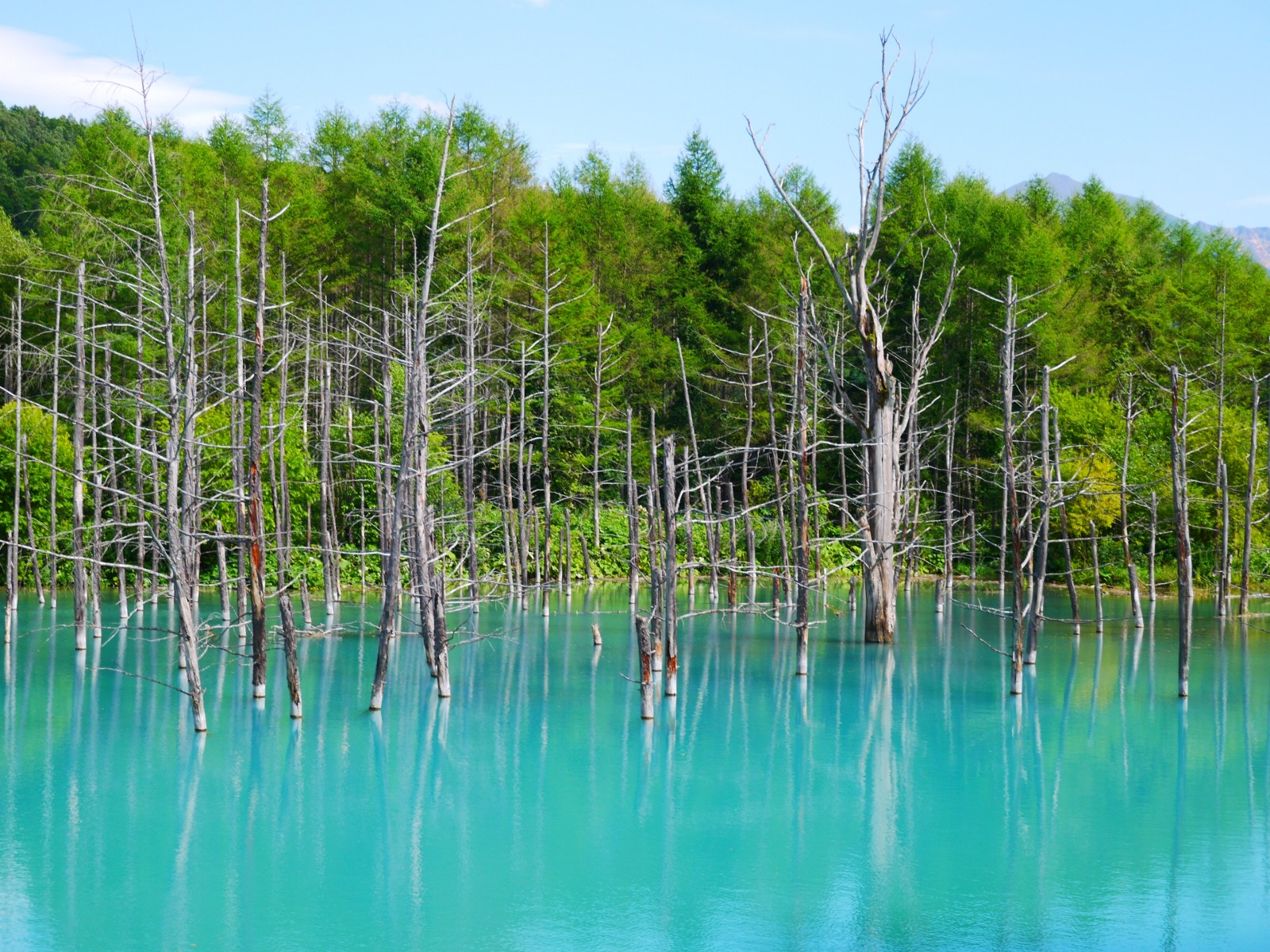 The picturesque Blue Pond in summer