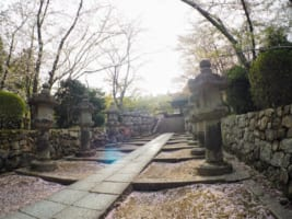 Miidera Temple: the Most Powerful Temple in Shiga