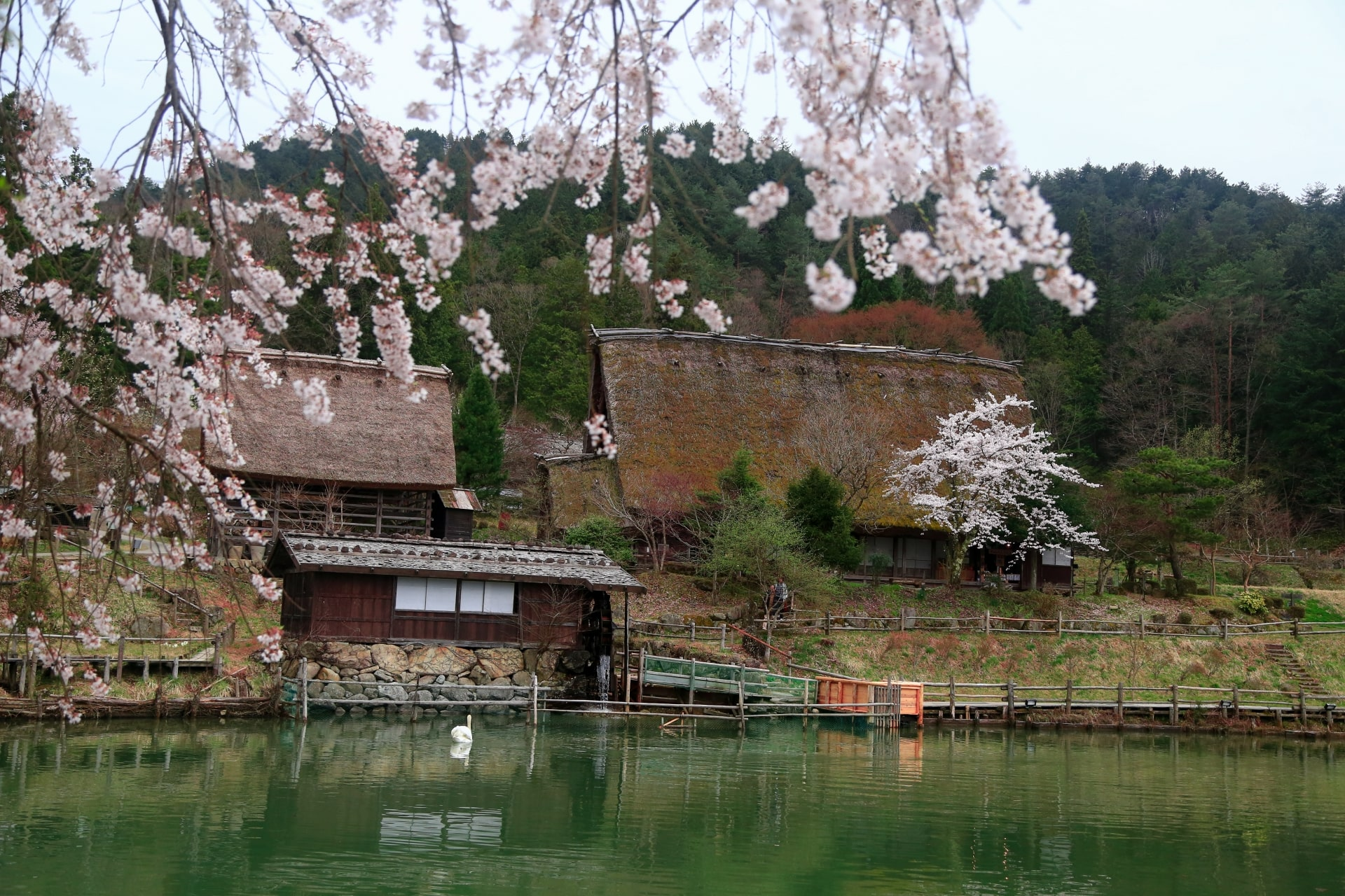 Hida Folk Village/Hida no Sato