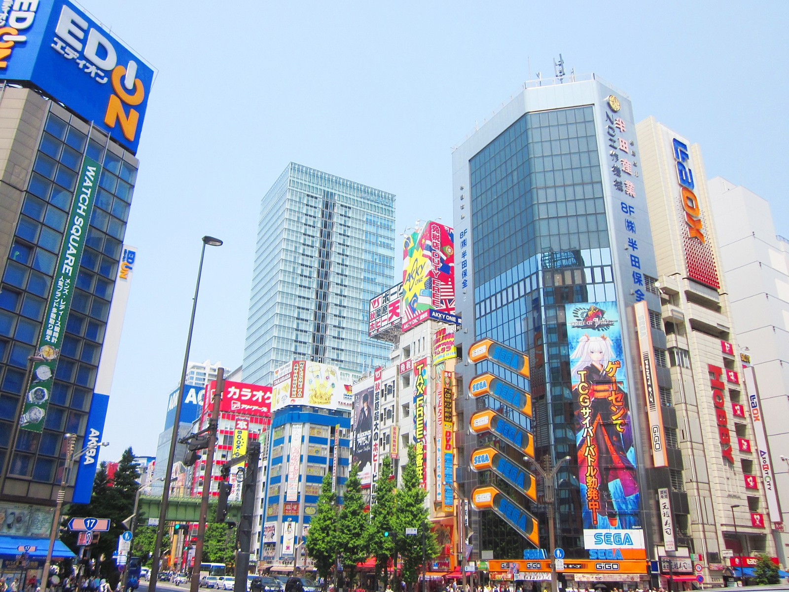 Akihabara offers hundreds of shops related to Otaku culture
