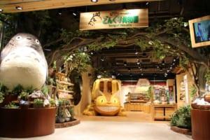 Donguri Republic: Explore the Hidden Ghibli World at Kamakura!