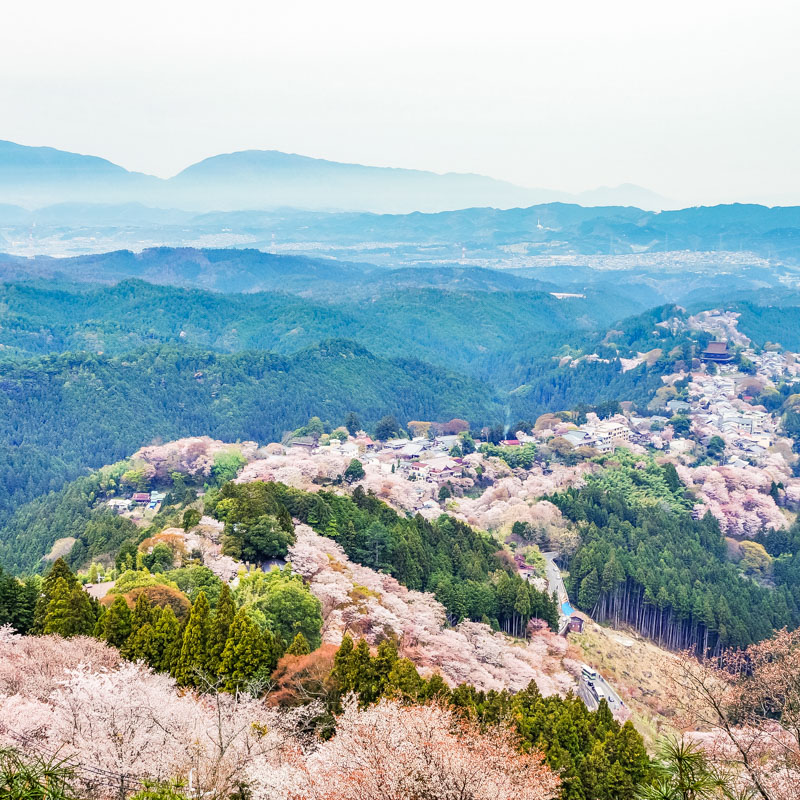 Mt.Yoshino in Nara