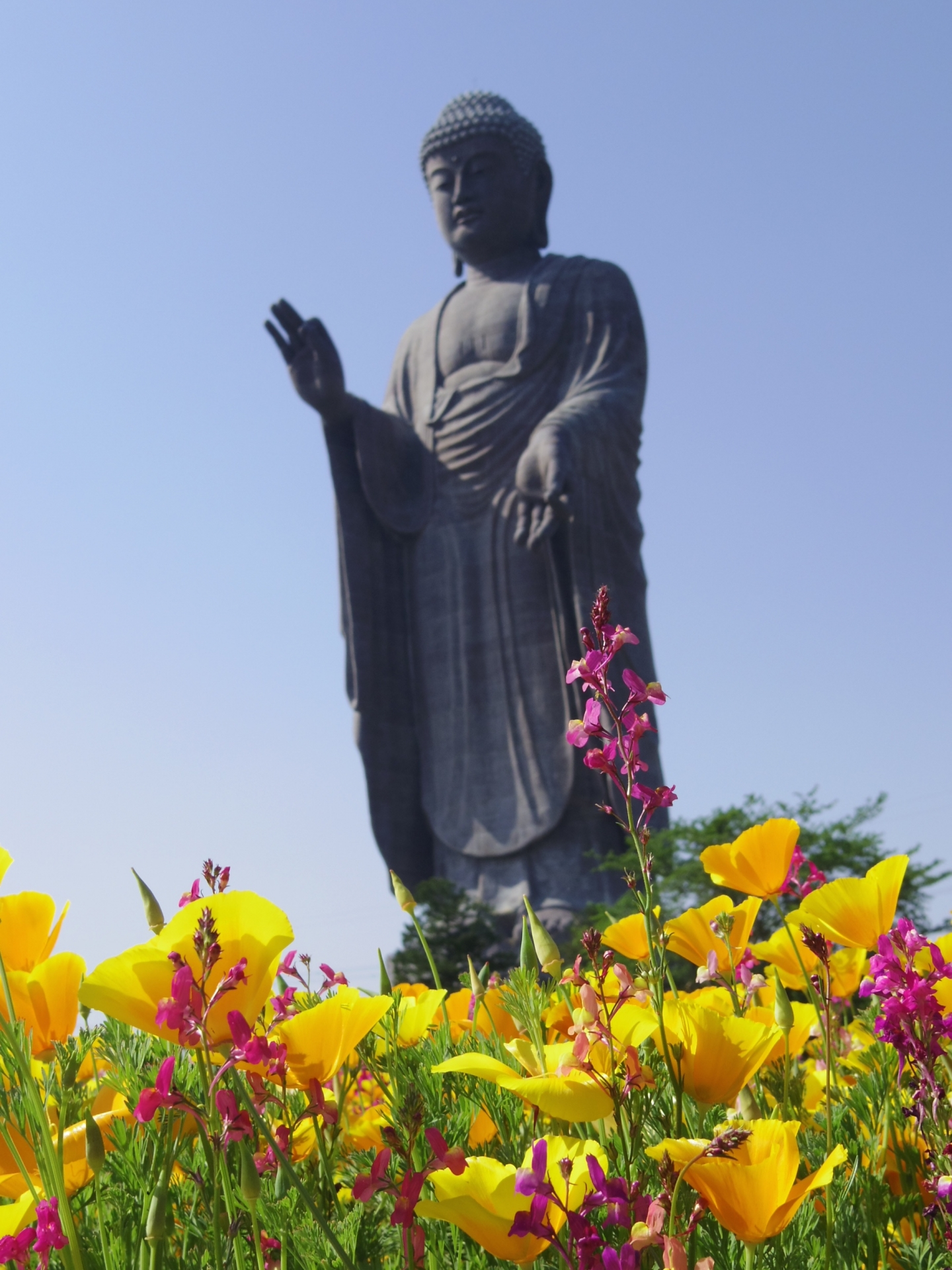 Ushiku Daibutsu Buddha with Flowers