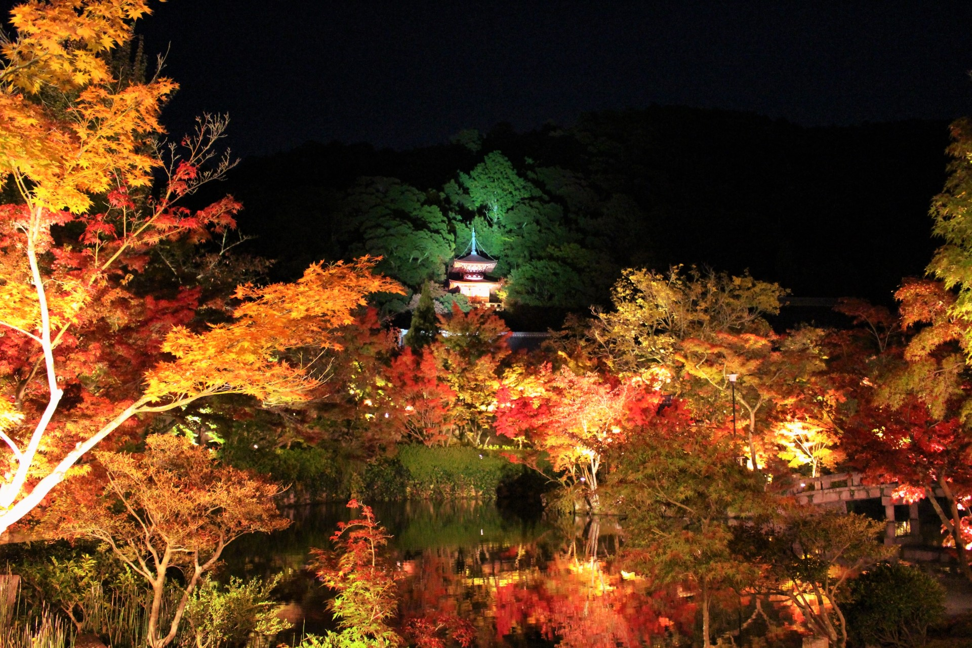 Eikando Zenrinji Temple : Best Autumn Leaves Illumination in Kyoto