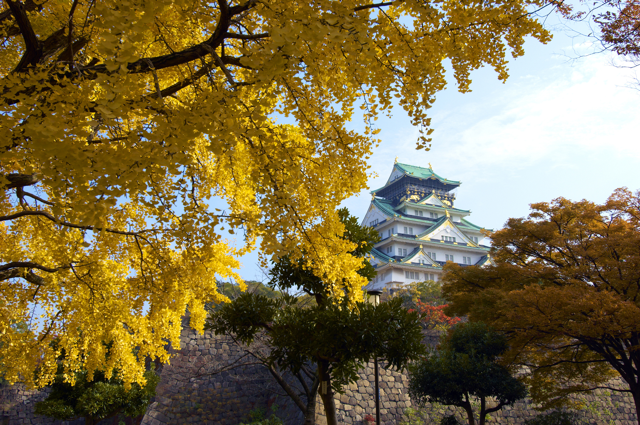 5 Best Autumn Leaves Spots in Osaka 2019