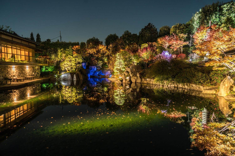 Mejiro Garden: the Hidden Japanese Garden inTokyo