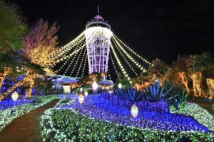 Enoshima Winter Illumination: the Jewel of Shonan