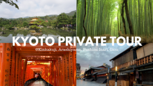 Best One Day Private Tour in Kyoto