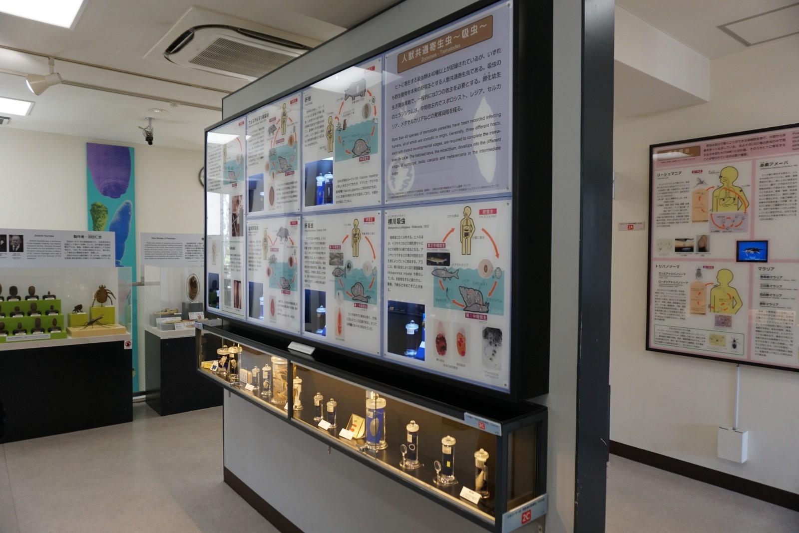 Meguro Prasitological Museum