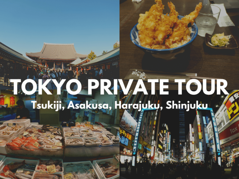 Senso ji, Tempura, Fish market, and Godzilla road