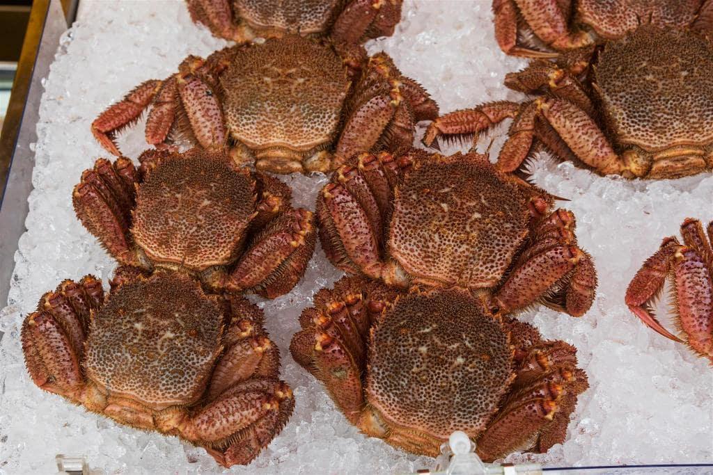 Crab in Hakodate