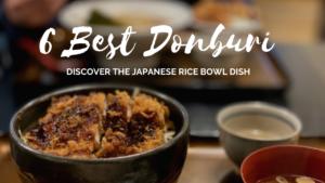 6 Best Donburi