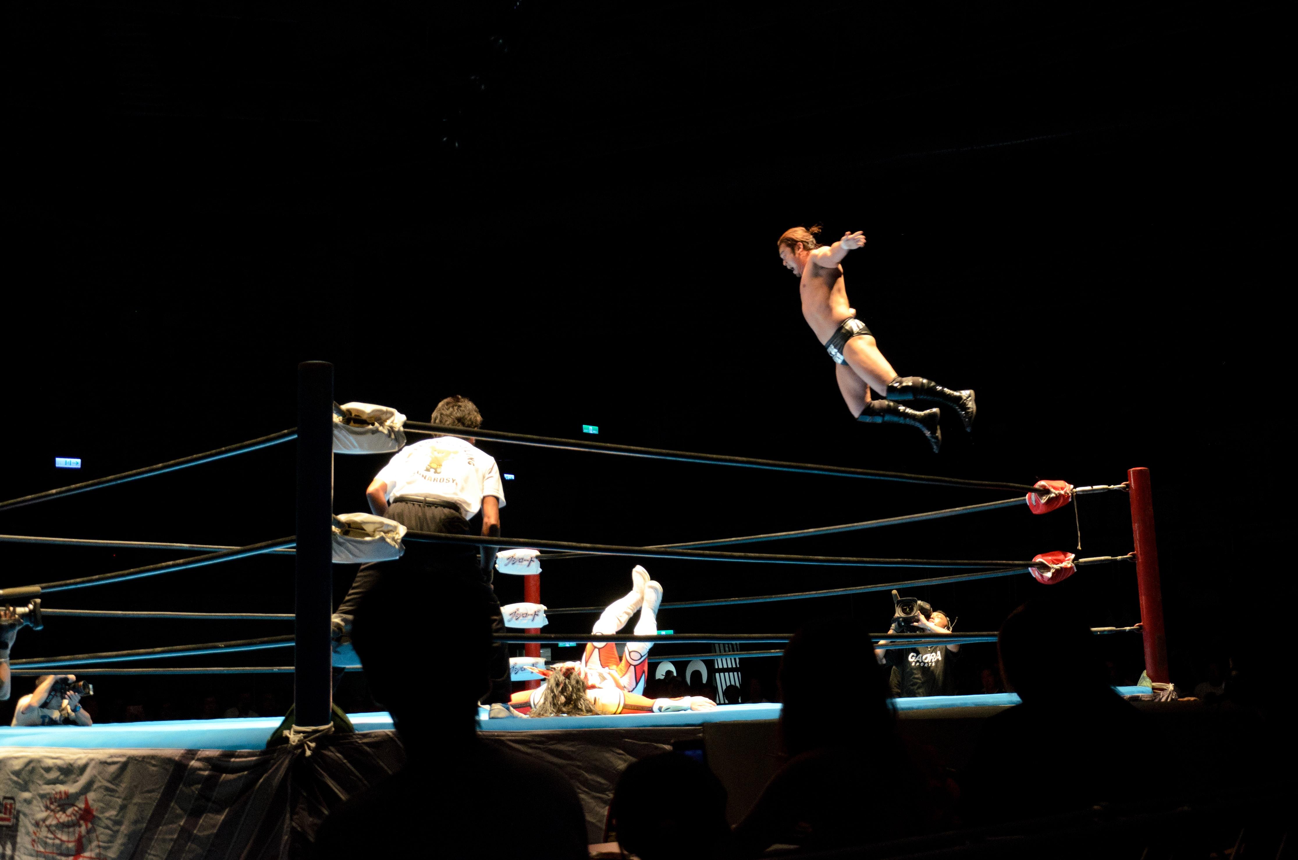 Japanese Pro-wrestling
