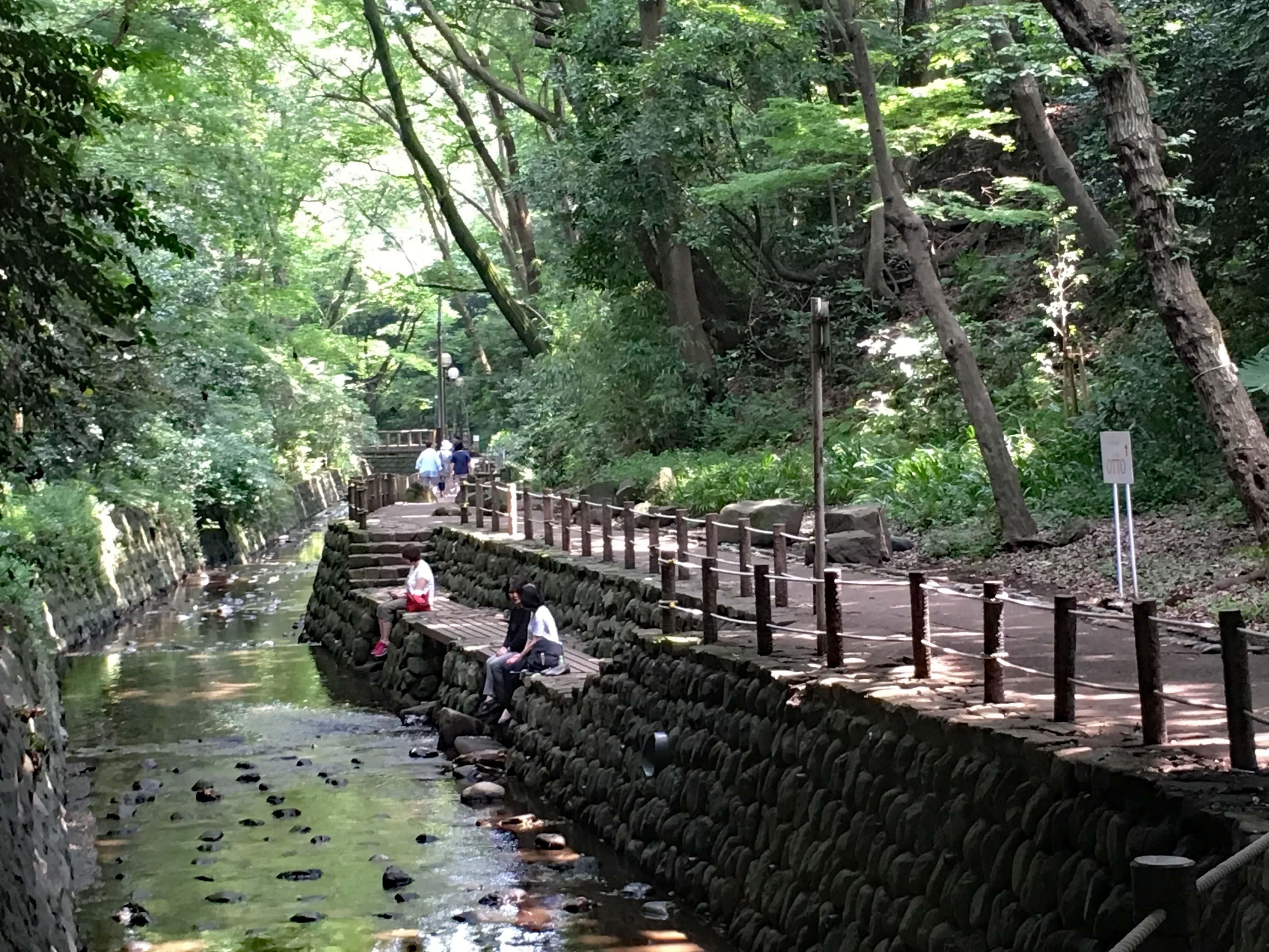 Todoroki valley