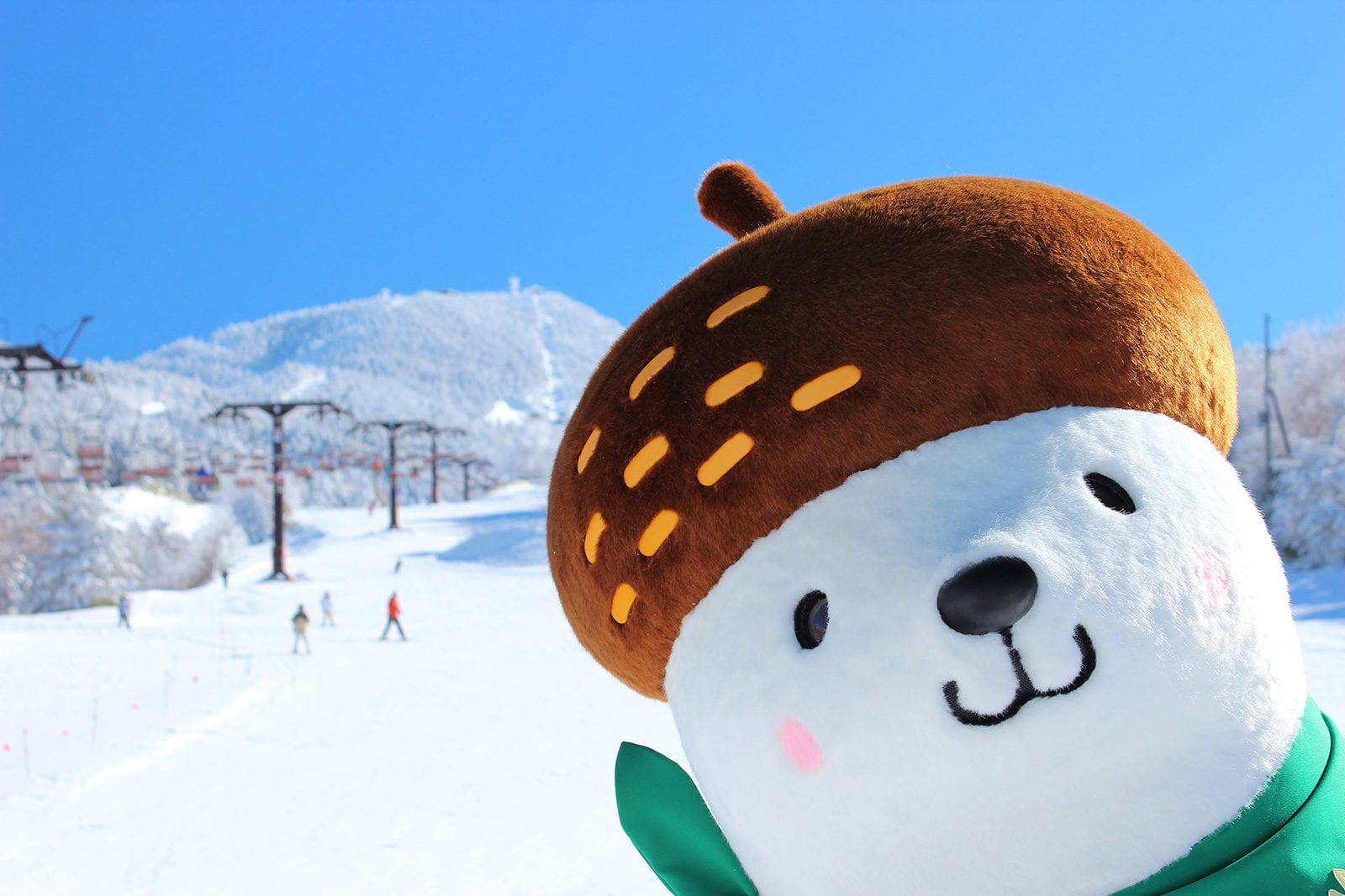 Icon character of Shiga Kogen Ski Resorts
