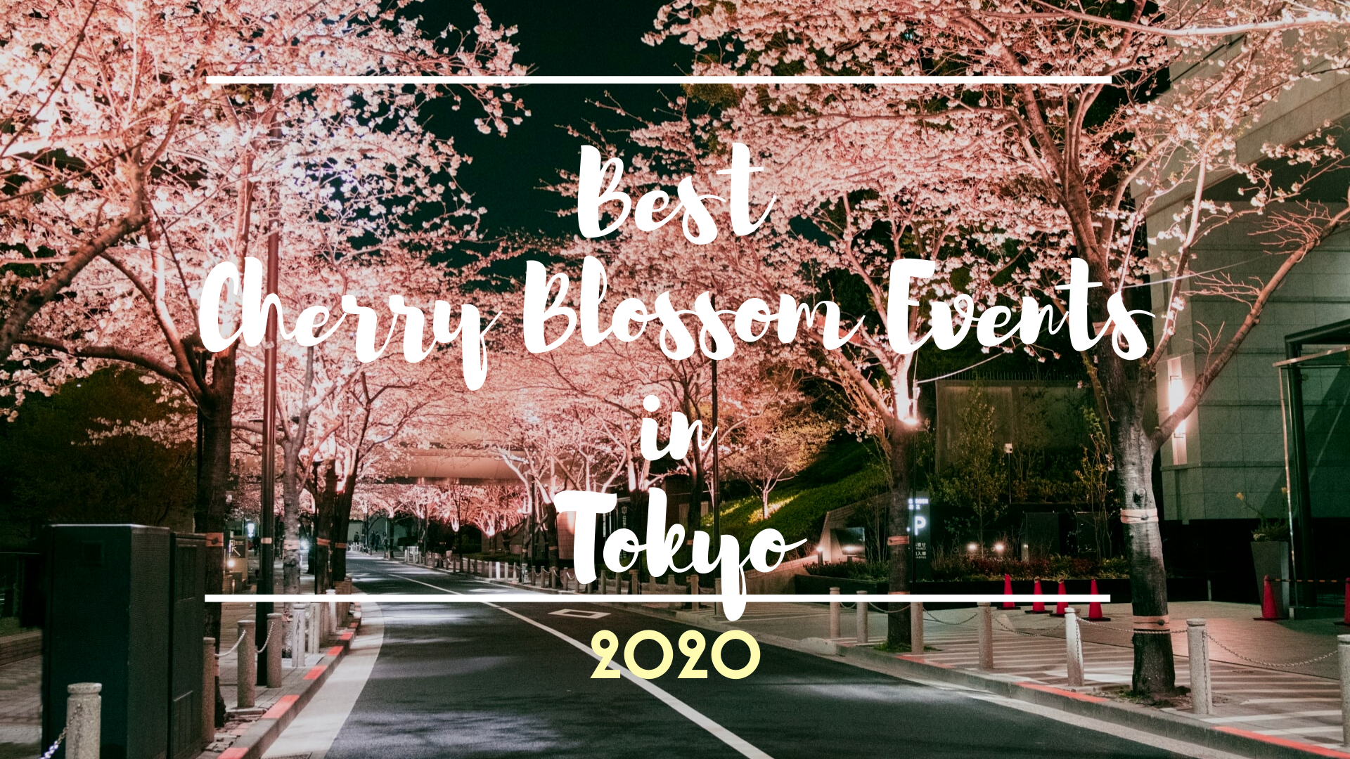 Best Cherry Blossom Events in Tokyo 2020