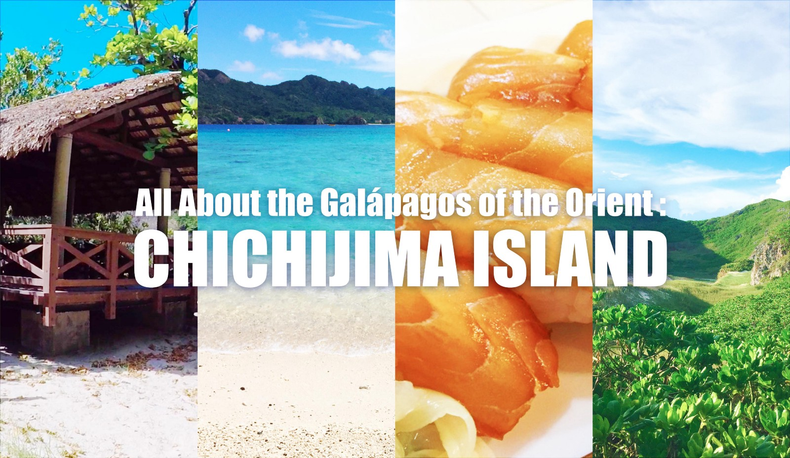 Things to Do in Chichijima Island