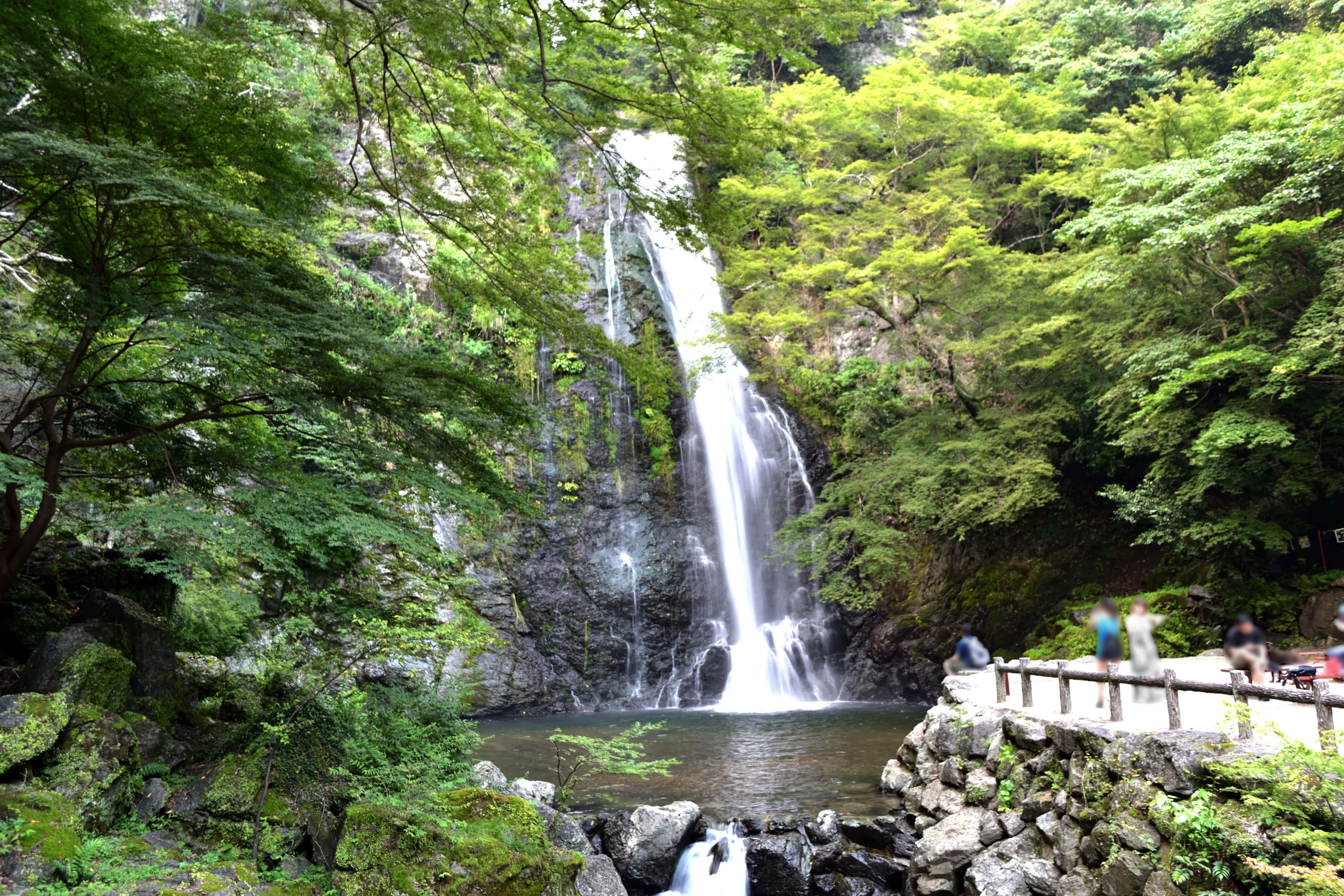 Minoo Park: Vast Nature Near Central Osaka