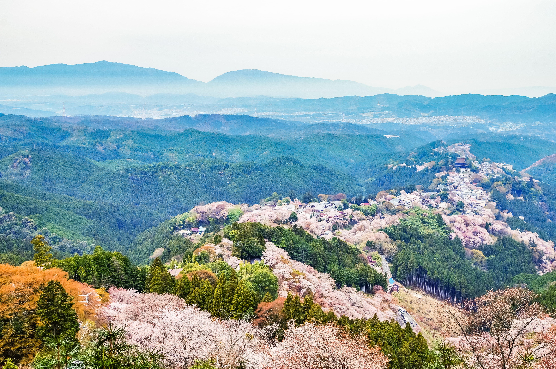 Mount Yoshino view