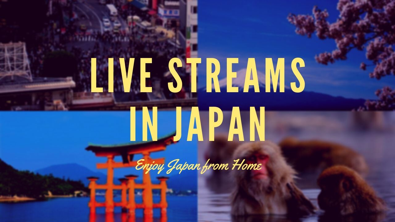Live Streaming Japan: Enjoy the Best Tourist Attractions at Home