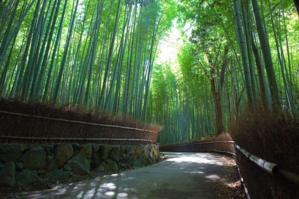 Kyoto Highlights Virtual Tour