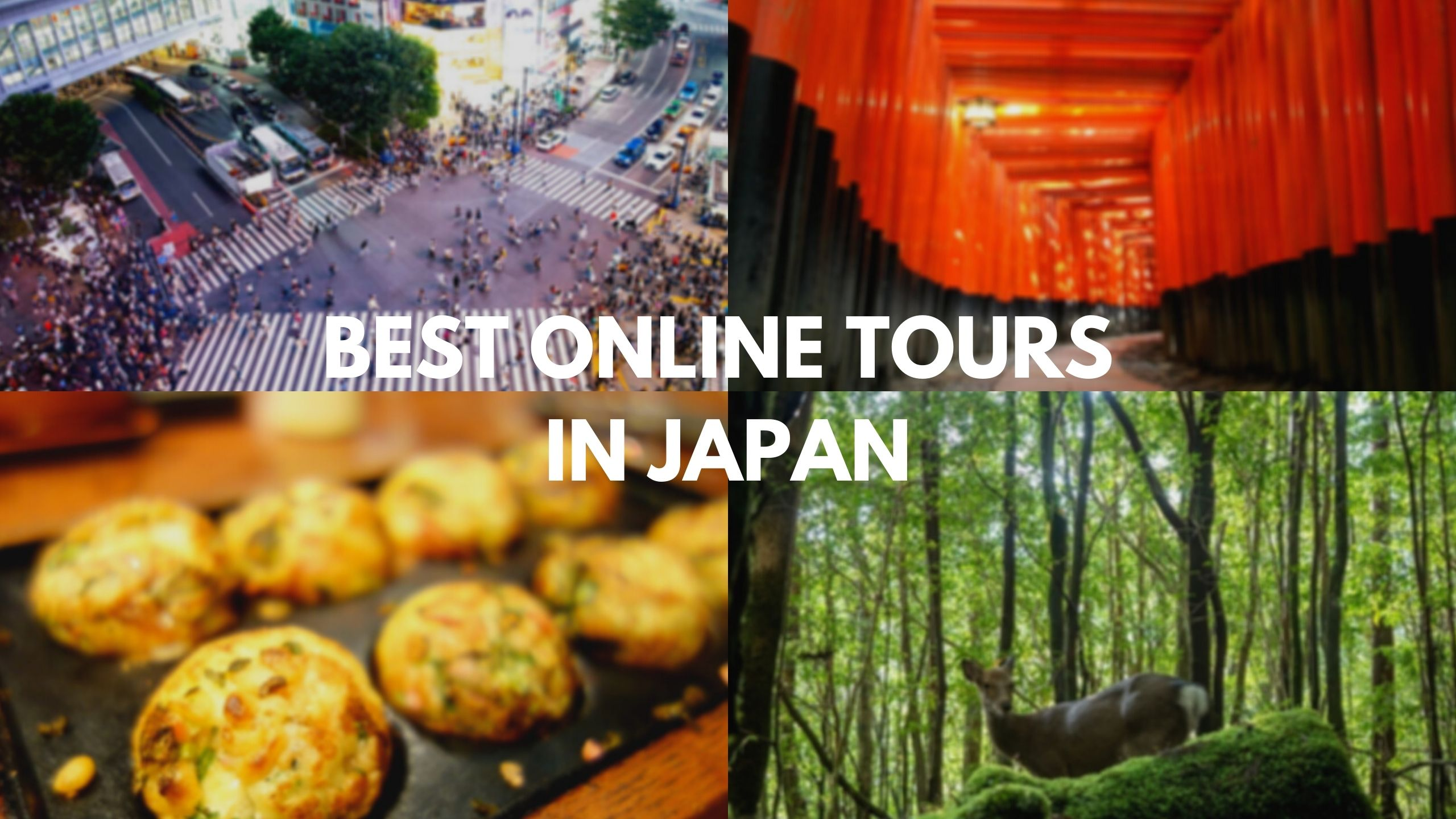 5 Best Online Virtual Tours in Japan