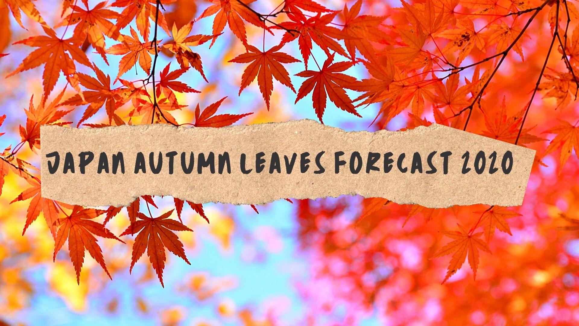 Japan Autumn Leaves Forecast 2020