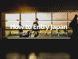 PCR Test at Japanese Airports: How to Enter Japan