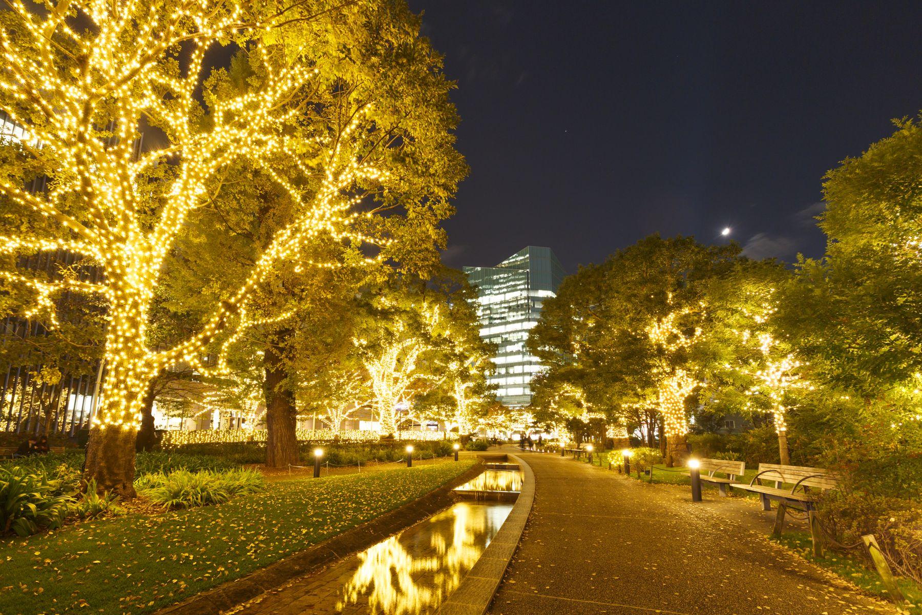 Tokyo Midtown Winter Illumination 2020