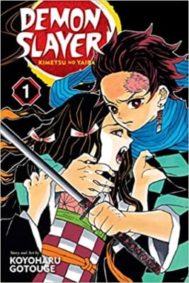 Demon Slayer- Kimetsu no Yaiba Vol. 1