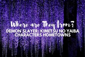 Demon Slayer: Kimetsu no Yaiba Characters Hometowns