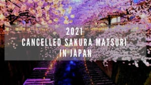 Cherry Blossom Festival Cancellations in Japan due to COVID-19