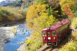 3 Best Things to Do in Kiryu, Gunma