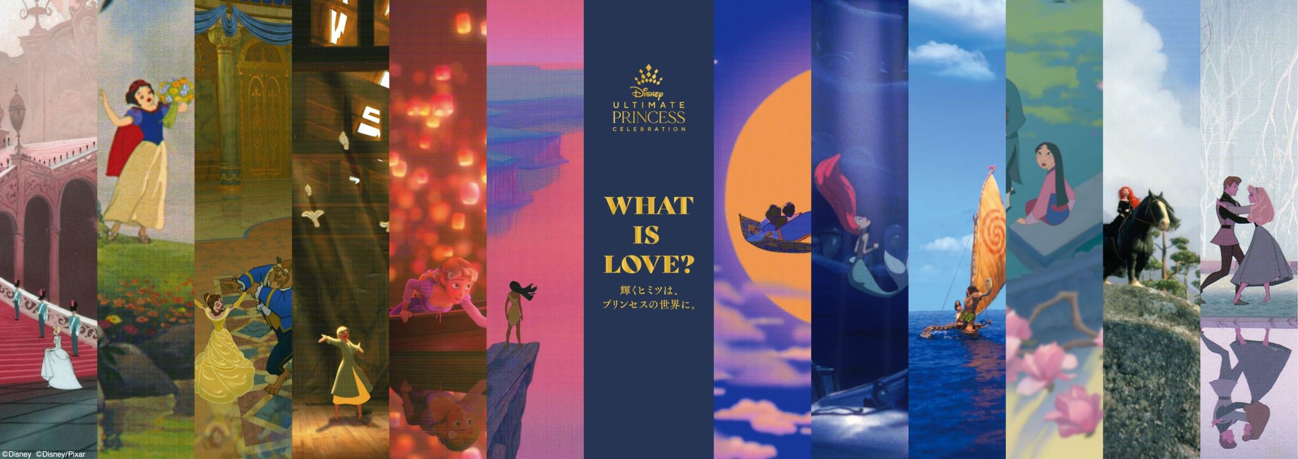 Disney Princess Exhibition in Japan 2021–2022