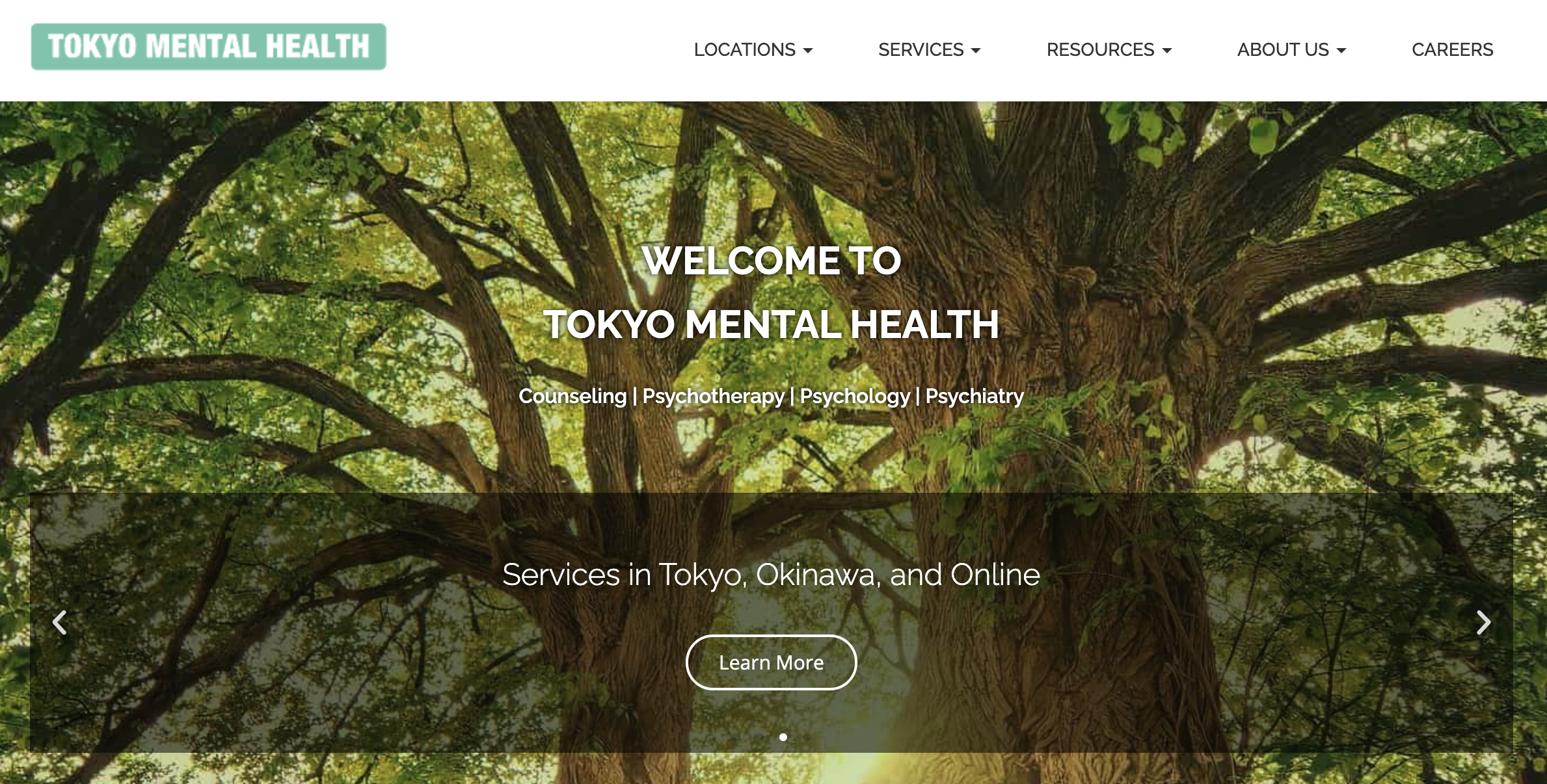 Tokyo Mental Health
